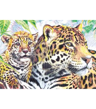 """Royal Brush 5""""x7"""" Colour Pencil By Number Kit-Jaguar Family"""