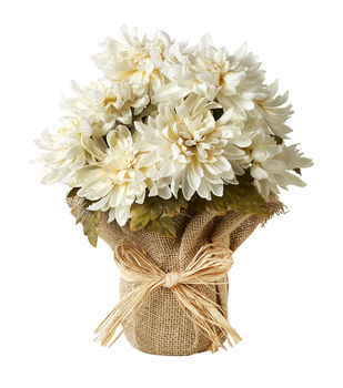 Blooming Autumn 13'' Mum Potted Arrangement-White