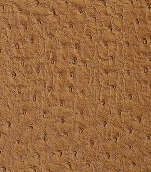 Home Dec 8''x 8'' Upholstery Fabric Swatch-Signature Series Emu Wheat