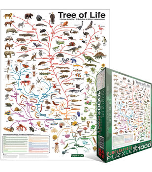 Euro Graphics Jigsaw Puzzle Evolution The Tree Of Life