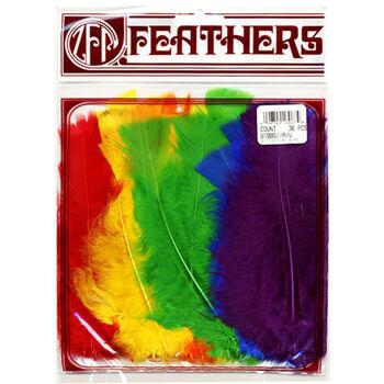 Turkey Flat Feathers 36/Pkg-Rainbow