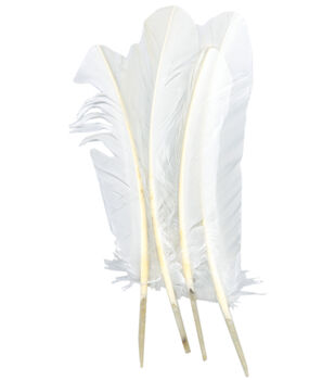 Turkey Quill Feathers 4/Pkg-White