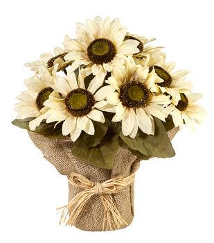 Blooming Autumn 13'' Sunflower Potted Arrangement-Cream