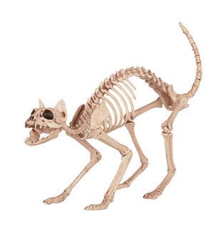 The Boneyard Cat Skeleton-Beige