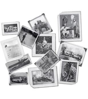 7 Gypsies Vintage Serengeti Photos