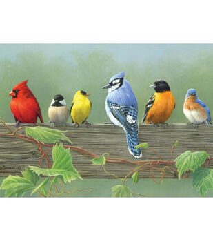 "Reeves Paint By Number Artist's Collection 12""X16-Rail Birds"