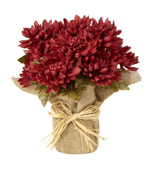 Blooming Autumn 13'' Mum Potted Arrangement-Red