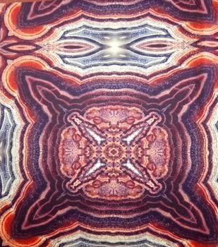 Nicole Miller Fabric-Scuba Knit Wicked