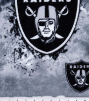 Oakland Raiders NFL Fleece Fabric by Fabric Traditions, , hi-res