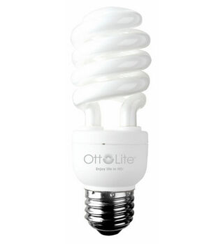 15 W Edison Bulb