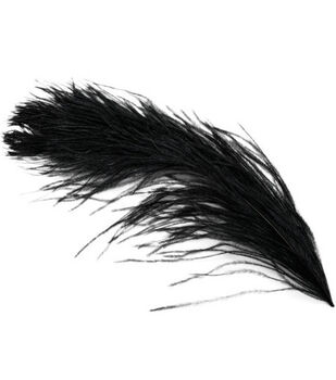 Ostrich Plume Feathers-1PK/Black