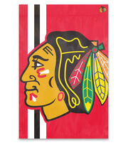 Chicago Blackhawks NHL Bold Logo Banner, , hi-res