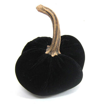 Pumpkin Boutique SmallPumpkin- Black Velvet