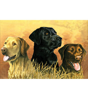 """Reeves Paint By Number Artist's Collection 12""""X16-Labs In Marsh"""