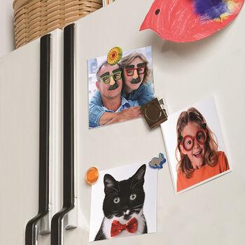 Refrigerator Collage