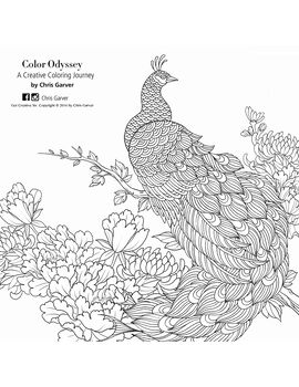 Color Odyssey: A Creative Coloring Journey Coloring Book Printables