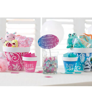 Gender Reveal Party Décor