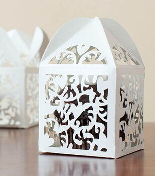 Domed Cupcake Box