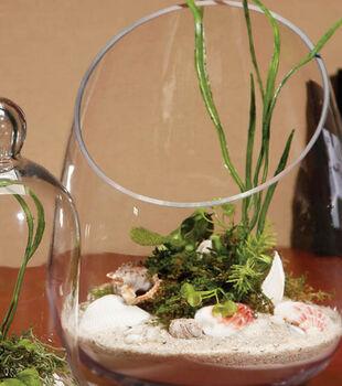 Slanted Terrarium