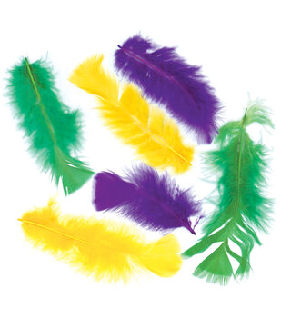 Midwest Design Flat Turkey Feathers 14 Grams-Mardi Gras