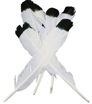 Simulated Eagle Feathers-4PK/White