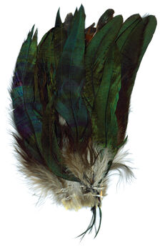 Strung Bronze Coque Feathers-Natural