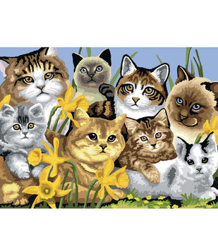 15-1/4''x11-1/4'' Junior Paint By Number Kit-Cats Montage