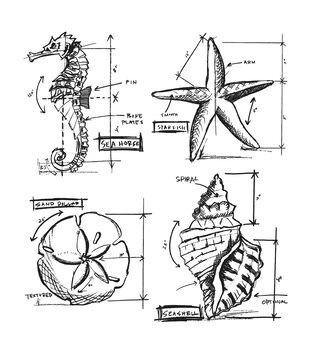Nautical  -Cling Rbbr Stamp Set