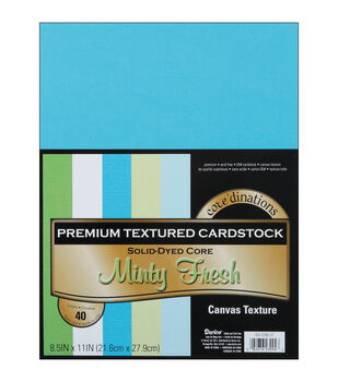 "Cardstock 8.5""X11"" 40/Pkg-Minty Fresh-Textured"