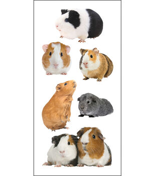 "Paper House Stickers 2""X4"" 3/Pk-Guinea Pigs"