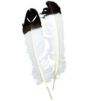 Zucker Imitation Eagle Quill 2/Pkg-White With Black Tip