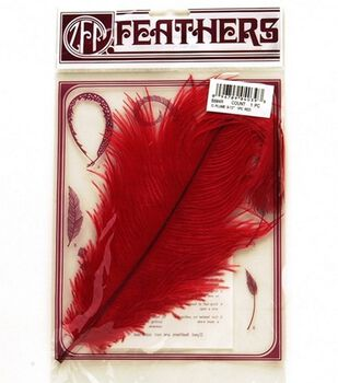 Red Ostrich Plume Feather