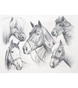 Sketching By Number Kit 13''X16''-Horse Montage