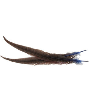 Pheasant Tail Feathers-2Pk