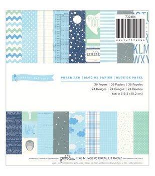 "Special Delivery Boy paper Pad 6""X6"" 36/Sheets-24 Designs"