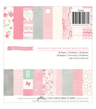 "Special Delivery Girl paper Pad 6""X6"" 36/Sheets-24 Designs"