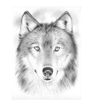 """Sketching By Number Kit 8""""X11-3/4""""-Wolf"""