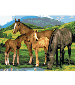 15-1/4''x11-1/4'' Junior Paint By Number Kit-Horse & Foals
