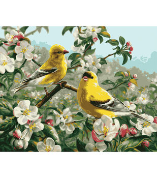 Plaid Paint By Number Kit 16''x20'' Goldfinches