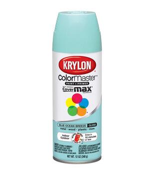 Krylon Indoor Outdoor Aerosol Paint-12oz