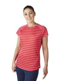 Women's Stripe Short Sleeve Crew Baselayer