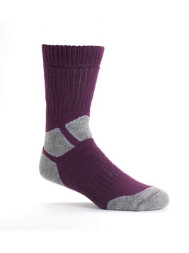 Women's Explorer Socks