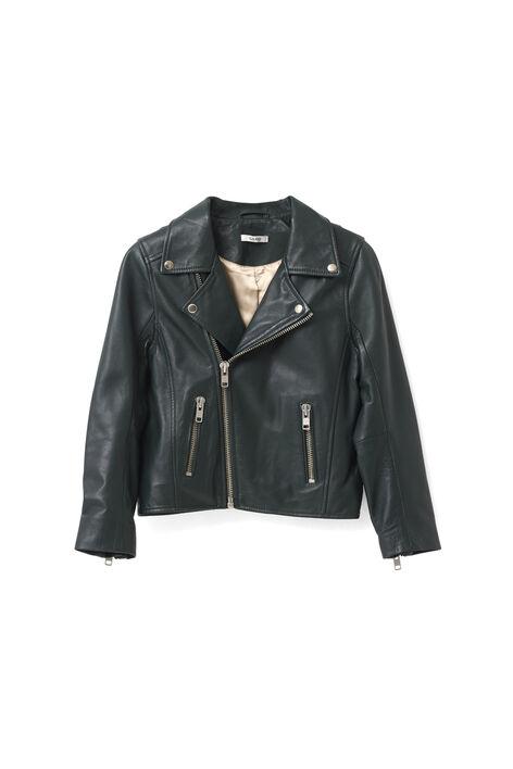 Passion Biker Jacket, Pine Grove, hi-res
