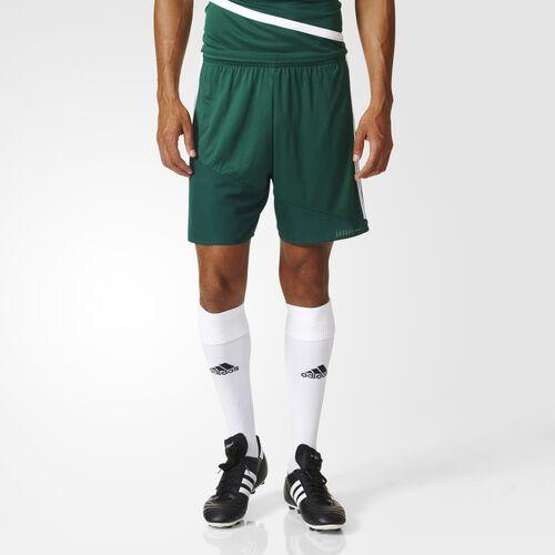 adidas - Regista 16 Shorts Collegiate Green  /  White AP0549