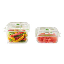 The NEW FoodSaver® Fresh Container,  2-Piece Set