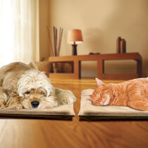 Sunbeam® Heated Pet Pads