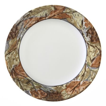 Impressions™ Woodland Leaves 16-pc Dinnerware Set