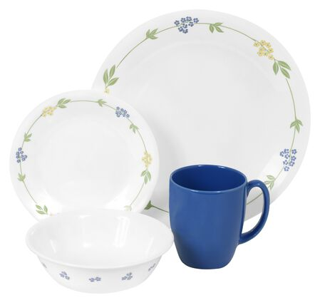 Livingware™ Secret Garden 16-pc Dinnerware Set