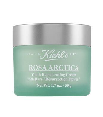 Rosa Arctica