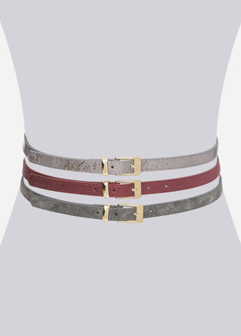 Metallic Skinny Belt Trio